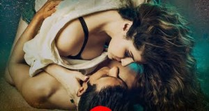 poster of hate story 3