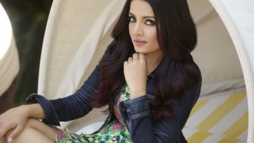 Celina Jaitly is pregnant with Twins again